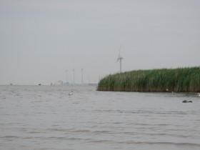 ...im Petkumer Hafen.
