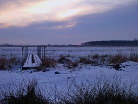 Winter am Siersmeerschloot