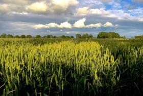 Himmel in Ostfriesland