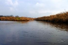 Mündung des Spetzerfehnkanals