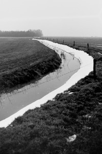 Feld nach Winter 1979