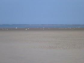 ...und noch mehr Meer.