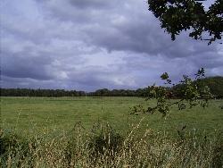 Landschaft bei Brockzetel