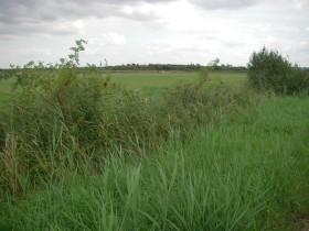 Siersmeer