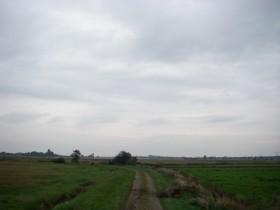 Landschaft bei Hüllenerfehn