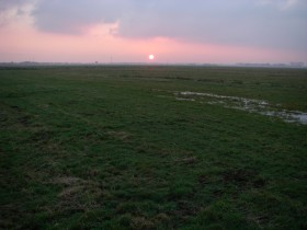 Tergast - Feld