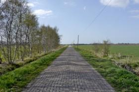 Der Neue Weg