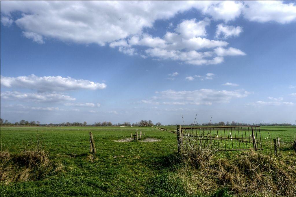 Feld und Himmel
