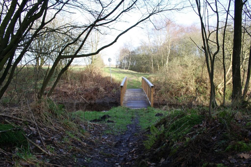 ...zu einer Brücke über den AMK