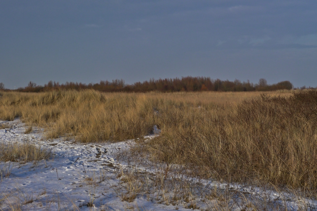 Rysumer Nacken im Winter