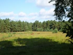 Landschaft auf Tjörn