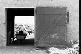 Hof im Brookmerland, 1982