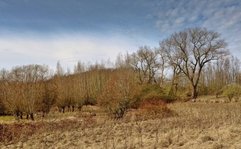 Lost Places und der Frühling